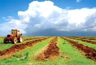 Morocco: FINACTU once again selected to work towards the development of agricultural insurance